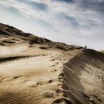 Pilotos de F1 que dieron el salto al duro Rally Dakar una vez retirados