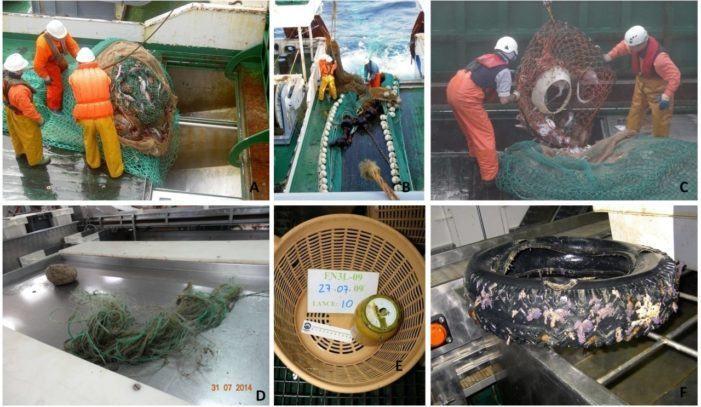Un estudio del Instituto Español de Oceanografía  confirma la escasa presencia de basura en los fondos marinos de la División 3L del área NAFO