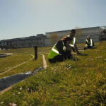 O programa de voluntariado da OMA permite erradicar a flora invasora do campus