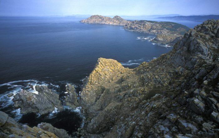 WWF y el Parque Nacional inician campaña de voluntariado para conservar Illas Atlánticas