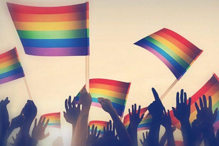 Presentados los resultados del Proyecto Europeo Avanzando en la gestión de la diversidad LGBT en el sector público y privado