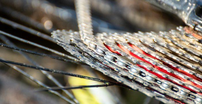 Roteiro, cadea ciclista e palestras virtuais na Semana do Medio Ambiente con ADEGA