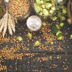 A Xunta convoca as axudas para impulsar novas plantacións de lúpulo, mellorar as xa existentes e adquirir maquinaria para mecanizar estes cultivos
