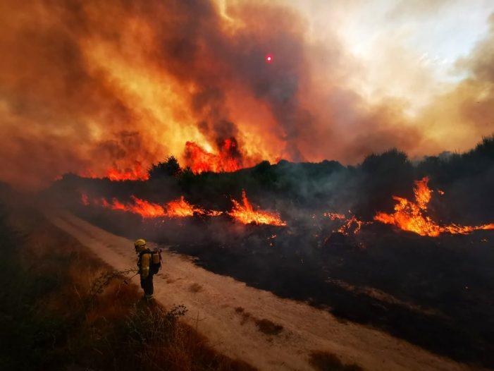 """Intencionalidade evidente"" nos recentes incendios"