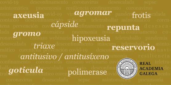 O Dicionario da Real Academia Galega segue a incorporar voces da pandemia e engade novas acepcións de 'gromo' e 'repunta'