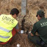 WWF destaca el avance en la lucha contra el veneno  en Extremadura ante la condena por envenenamiento de milanos reales