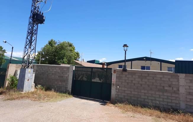 WWF pide al gobierno de Aragón el cierre permanente  de la granja de visón americano de La Puebla de Valverde