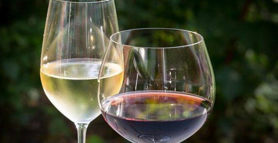 ¿Cuáles son los mejores vinos de Cádiz?