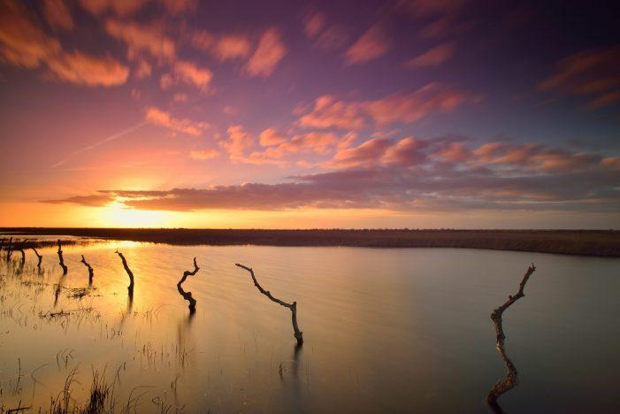 Mañana se cumplen 51 años de la creación del Parque Nacional de Doñana