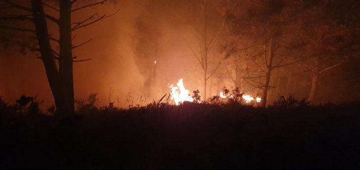 A Xunta destaca a clara intencionalidade que se demostra cos 255 incendios nocturnos rexistrados no último mes en Galicia en horas nas que os medios aéreos non poden actuar