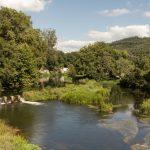 A Xunta investirá 220.000 euros na restauración do bosque de Ribeira no río Umia ao seu paso polo concello da Estrada