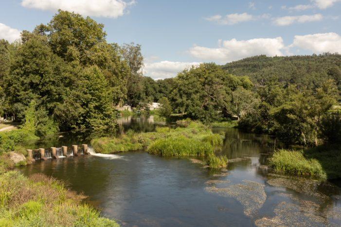 A Xunta publica no DOG a encomenda á empresa pública Seaga dos traballos de restauración do bosque de ribeira no río Umia ao seu paso polo Concello da Estrada
