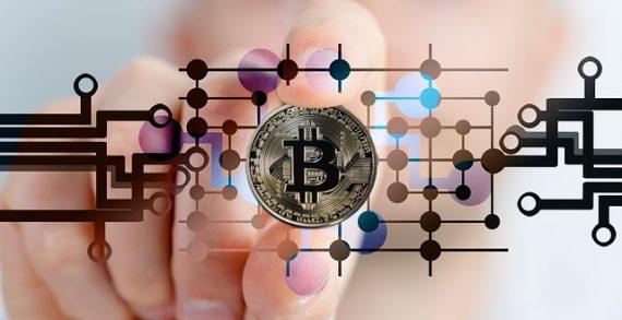 Los tipos de monederos Bitcoin más usados
