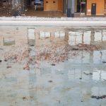 Comunicado do Concello de Vigo ante o ocorrido nos estanques de Navia