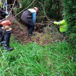 La Xunta realiza actuaciones de conservación y limpieza en el trecho interurbano del río Quenxe, a su paso por el ayuntamiento de A Laracha