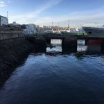 O BNG insta o Goberno a paralizar o recheo do porto de Vigo
