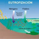 Solicitan a designación de Zona Vulnerables aos Nitratos para a comarca da Limia