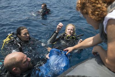 proyecto libera mar