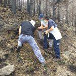 La Xunta colabora en el análisis del impacto en el suelo del incendio registrado en la localidad abulense de Navalacruz