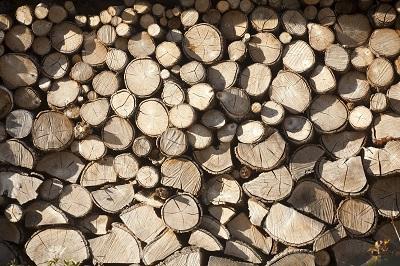 La Xunta enajenó 61 lotes de madera por 3,8 M€ en la subasta pública electrónica celebrada en Lugo