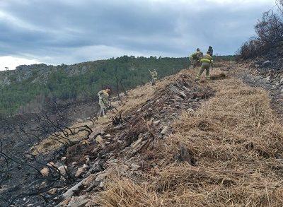 La Xunta comienza la aplicación de paja con la técnica del mulching en las zonas más afectadas por los fuegos de Ribas de Sil para proteger el suelo y evitar arrastres
