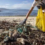 La última acción de '1m2 por las playas y los mares' cierra con la recogida de más de 40 kilos de basuraleza en 21 puntos de la costa gallega
