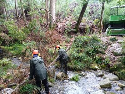 La Xunta realiza actuaciones de conservación y limpieza en los trechos interurbanos de tres ríos en el ayuntamiento de Carnota